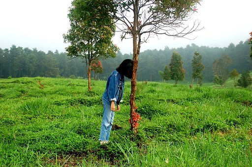 Funny Pictures-A Girl is Standing with the Support of Tree in Green Silent Place
